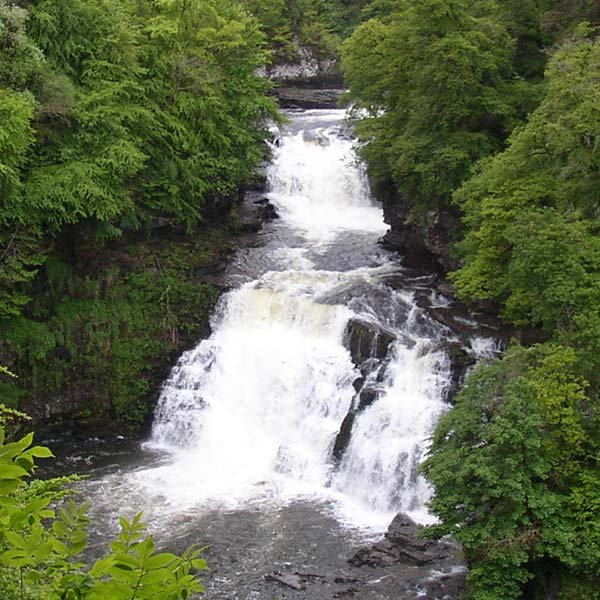 Falls of Clyde webcam
