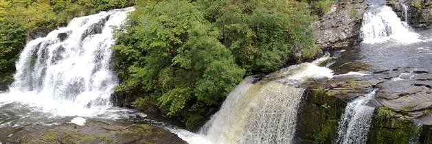 Falls of Clyde © Scottish Wildlife Trust