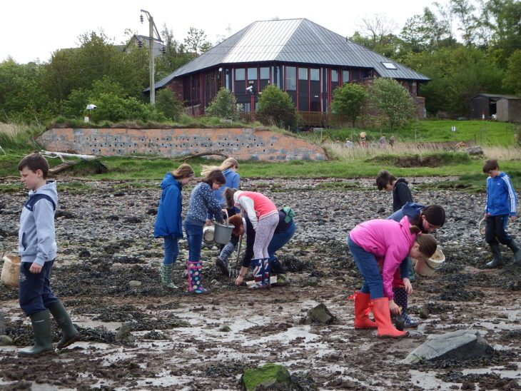 Mud digging at Montrose Basin