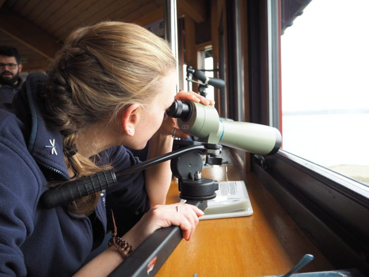 Birdwatching at Montrose Basin Visitor Centre