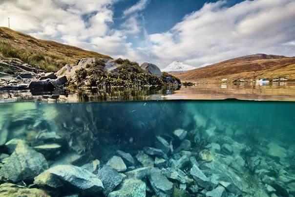 Harris underwater