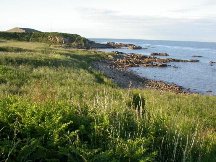 Kilminning Coast
