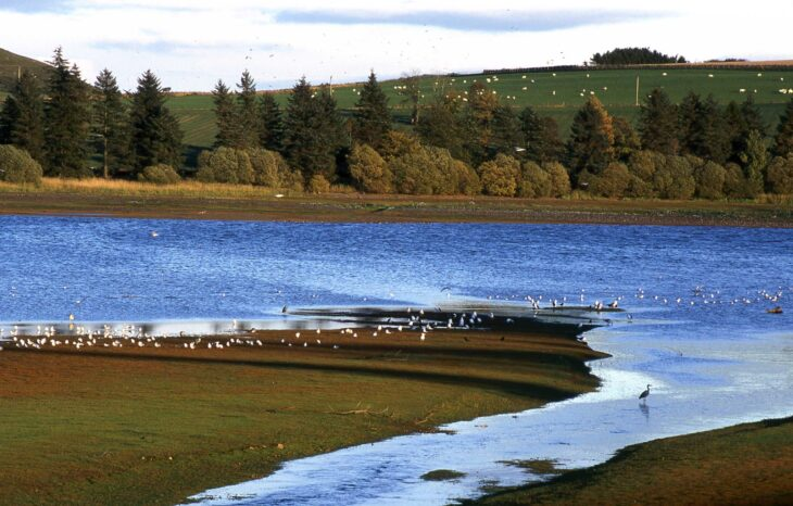 Loch of Lintrathen