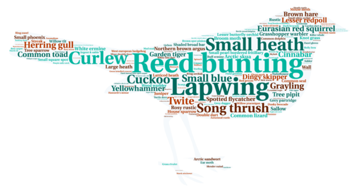 Protected species wordcloud