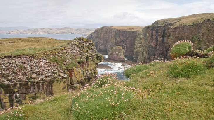 The great stack and cliffs of Handa Island.