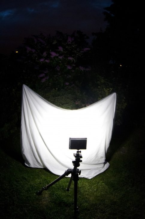 An example of a homemade moth trap (C) Jack Perks