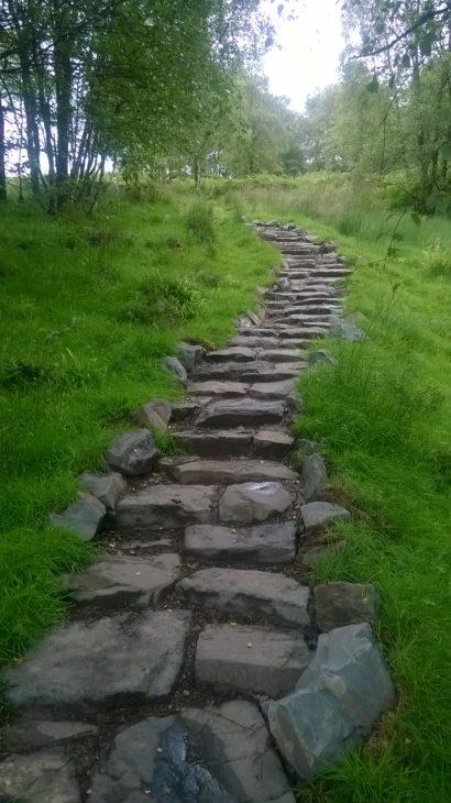 New path © Sven Rasmussen