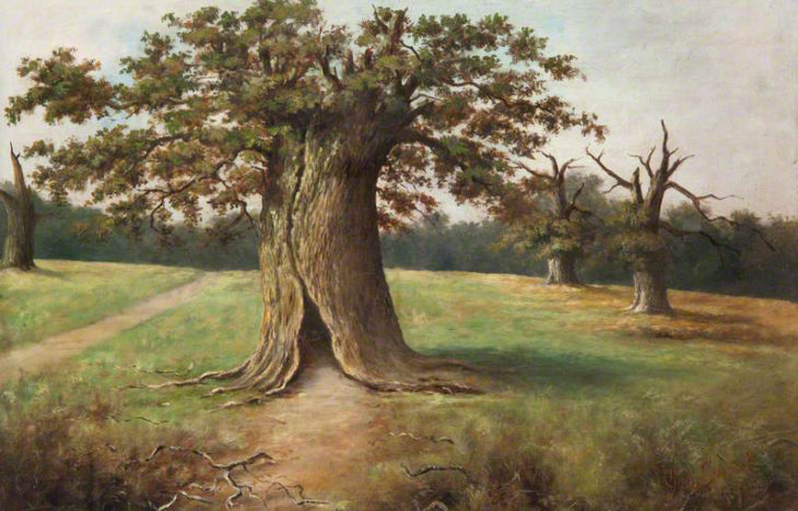 Sweet, George, 1852-1923; Boss Oak, Cadzow Forest © Photos courtesy of Art UK