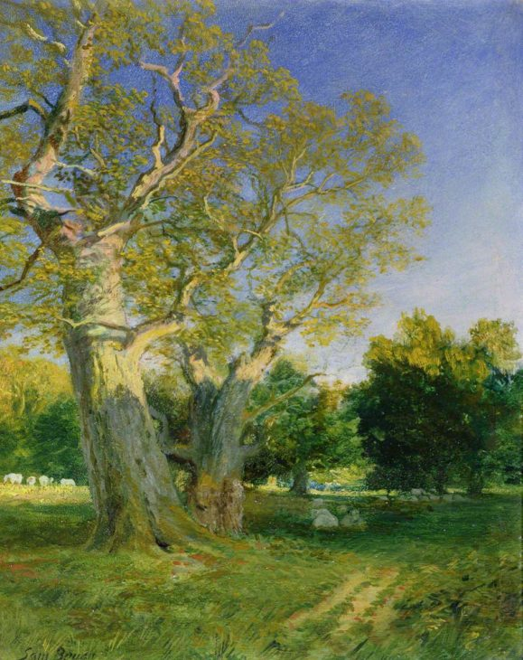 Bough, Samuel, 1822-1878; Summer Evening, Cadzow © Painting courtesy of Art UK