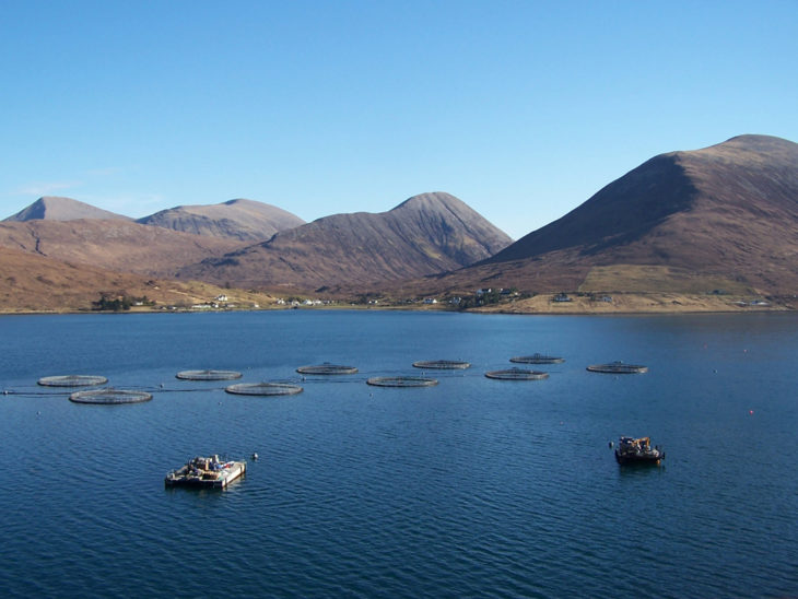 Fish farm in Loch Ainort © Richard Dorrell