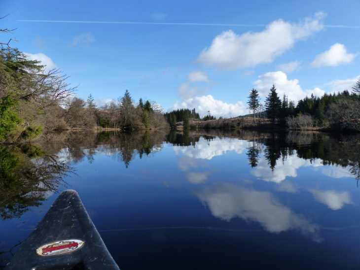 Loch view in Knapdale © Rory Sandison, Scottish Beavers