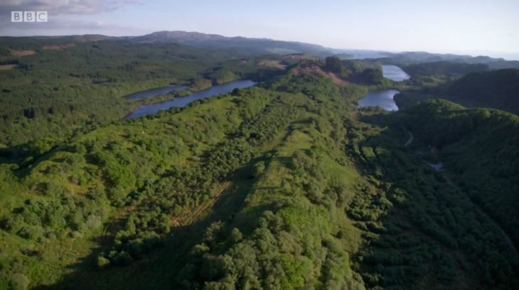 Drone footage of Knapdale Forest © Tern TV
