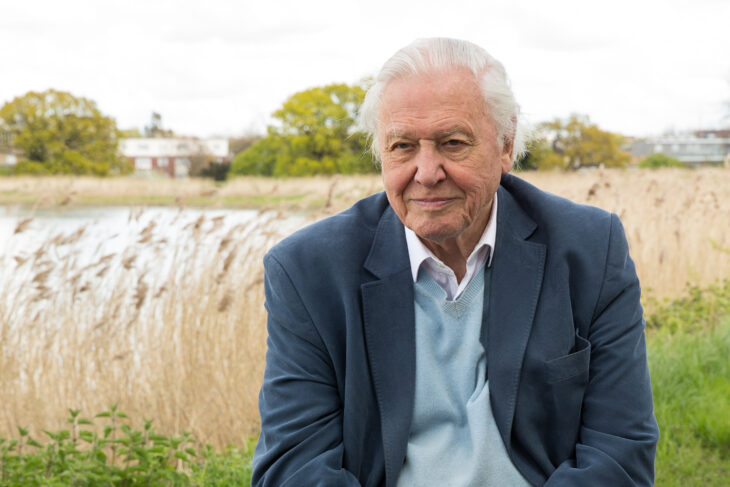 President Emeritus of The Wildlife Trusts Sir David Attenborough © Dixie Lee