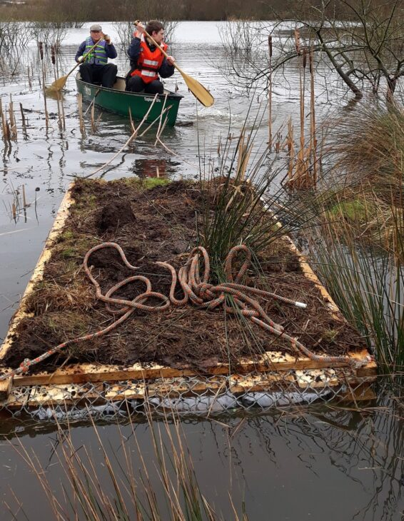 Towing the artificial raft to its final position © Scottish Wildlife Trust