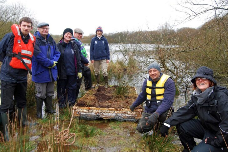 Volunteers with the artificial raft © Scottish Wildlife Trust