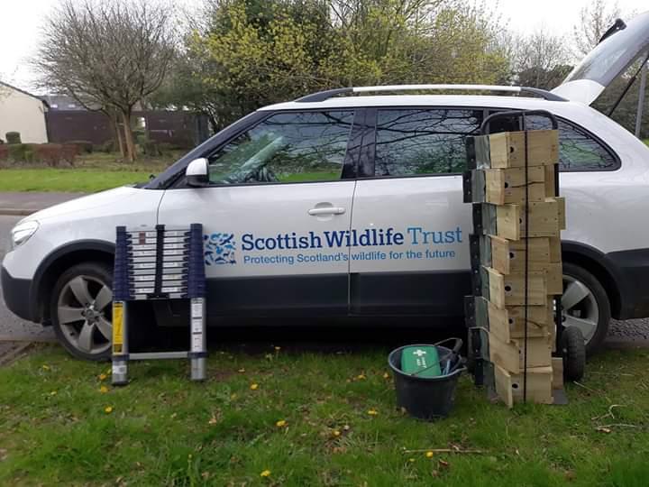 Bird box installation day at Boutreehill Park, Irvine © Scottish Wildlife Trust