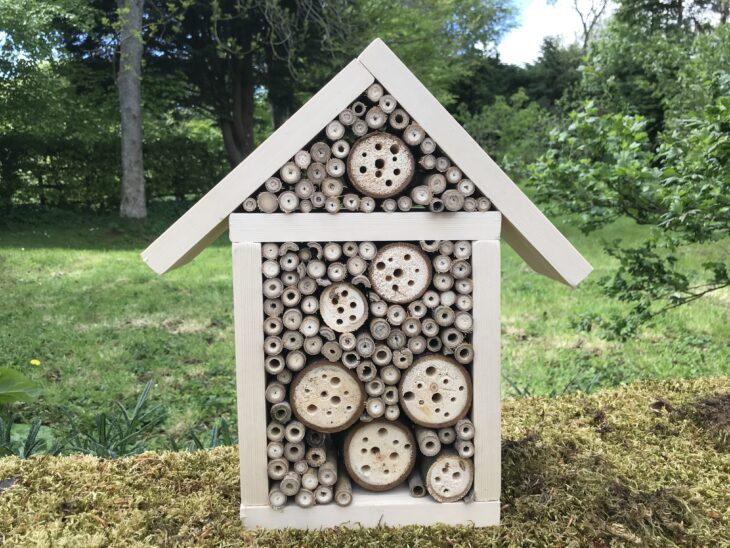 Bee hotel © Pete Haskell