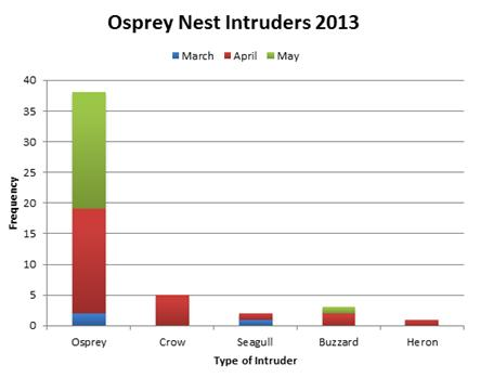Frequency of nest intruders since the resident ospreys returned to Lowes. Each colour represents a month.