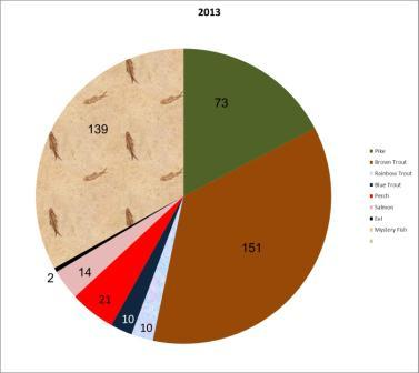 Fish pie chart total 2013 - 420 fish