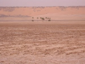 Dune edges in Mauritania