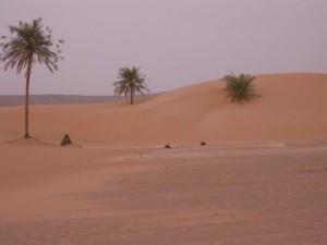 Sand Dunes in Mauritania