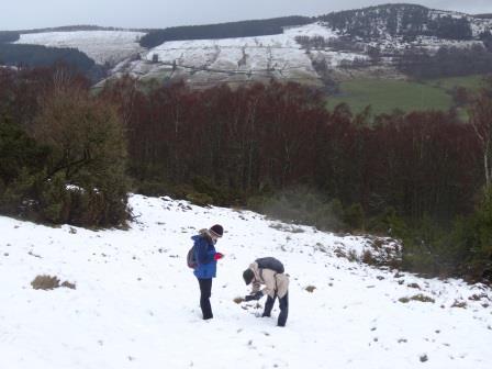 Snow Tracking at Balnaguard Glen