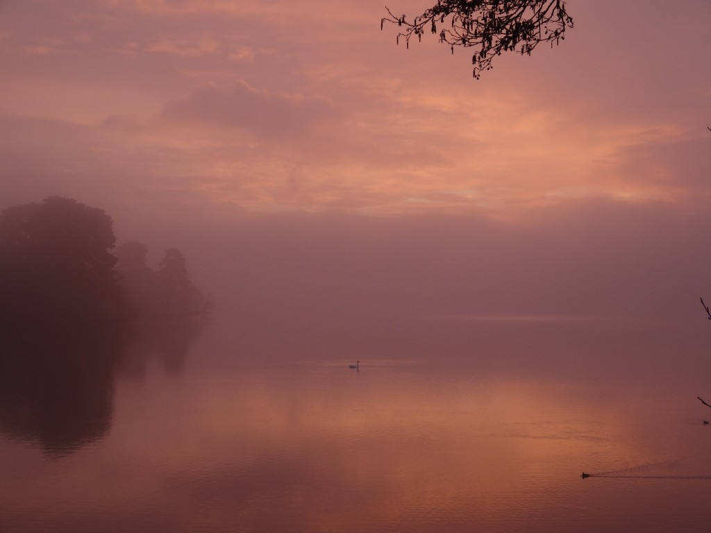 Loch of the Lowes at Dawn 5th April by Emma Rawling