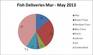 52 days of fish deliveries, from 30th March – 20th May 2013.