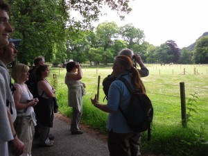 Guided Walk with Ranger Emma