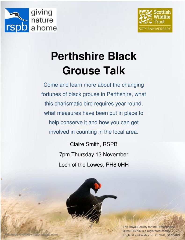 Black Grouse Talk Poster-page-0