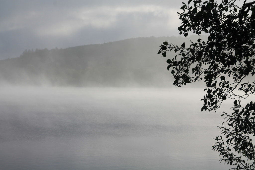 A misty morning at Loch of the Lowes ©Laura Hopkins/Scottish Wildlife Trust