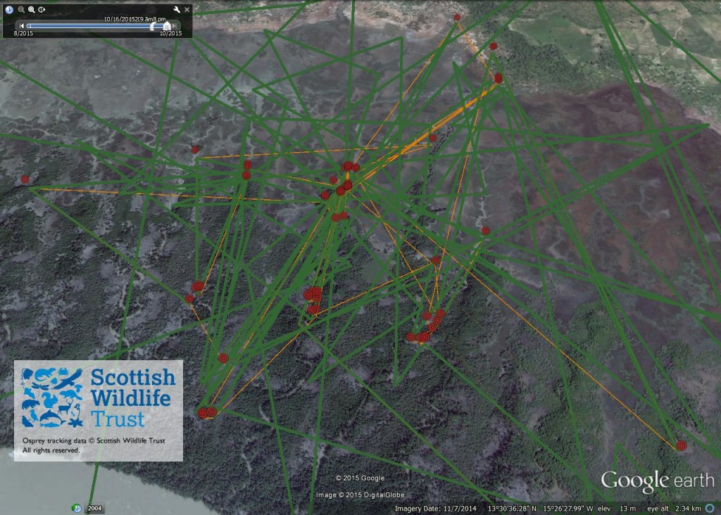FR4's activity between 16th and 20th October ©Scottish Wildlife Trust
