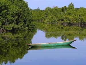 Ndemban River (Credit: Tommaso Rontevroli)