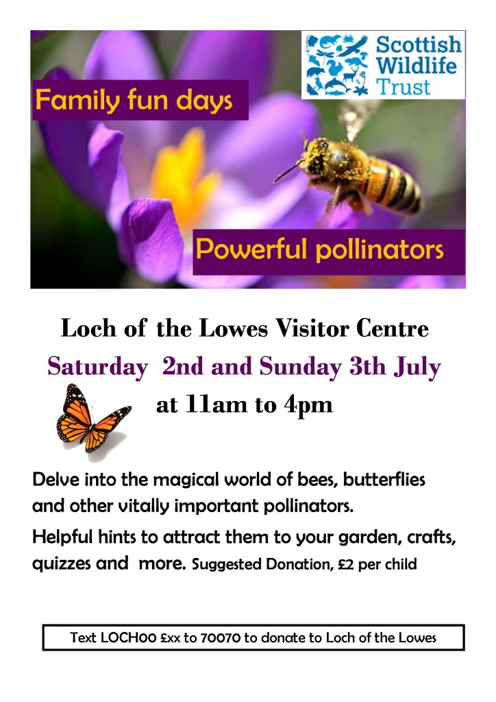 Powerful pollinators-page-0