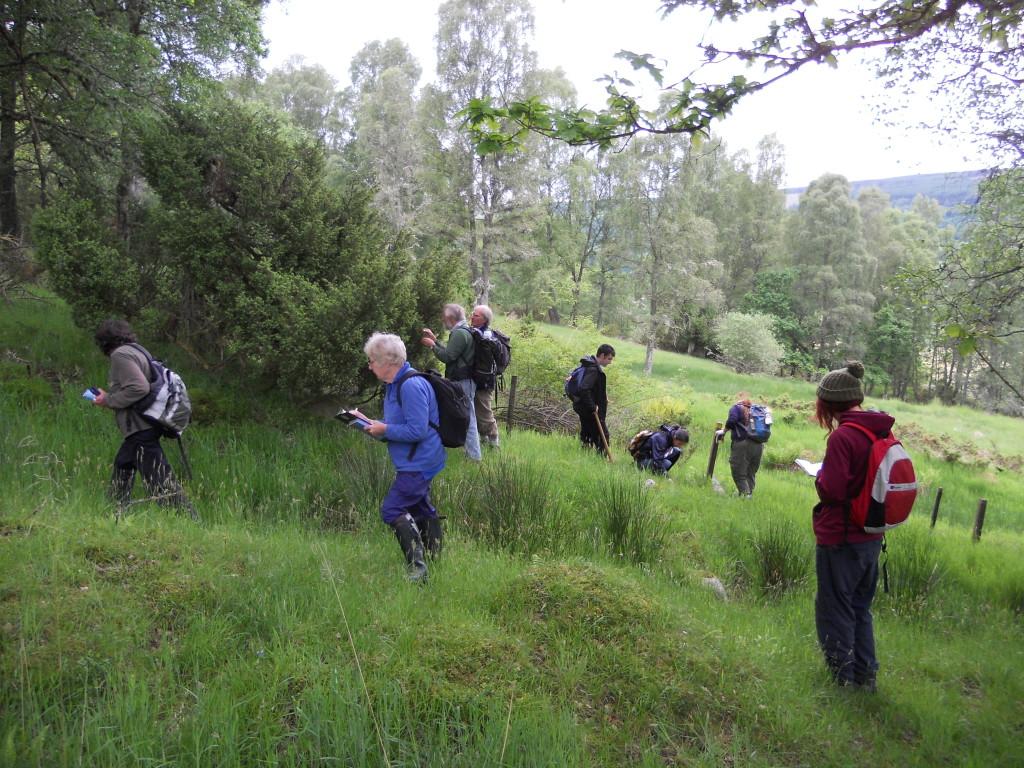 Conservation volunteers carrying out survey work at Balnaguard Glen ©Scottish Wildlife Trust