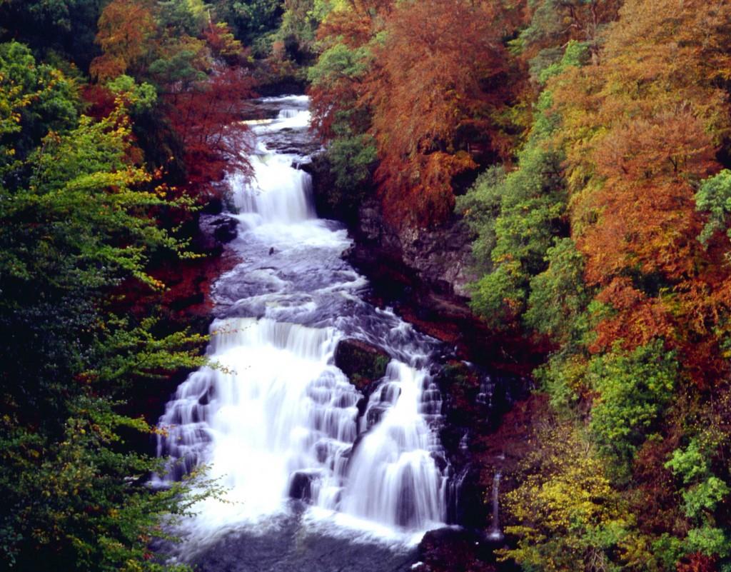 Corra Linn in Autumn © Scottish Wildlife Trust