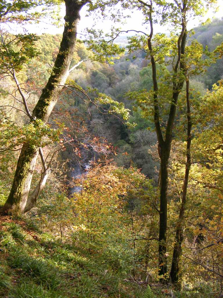 Lower Nethan Gorge © Stephen Blow