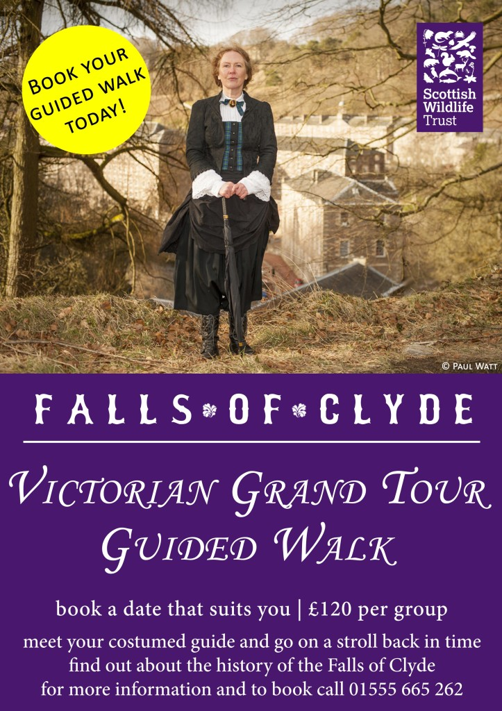 Victorian-Grand-Tour-Guided-Walk