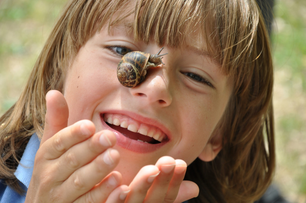 Snail investigations (c) Emma Bradshaw
