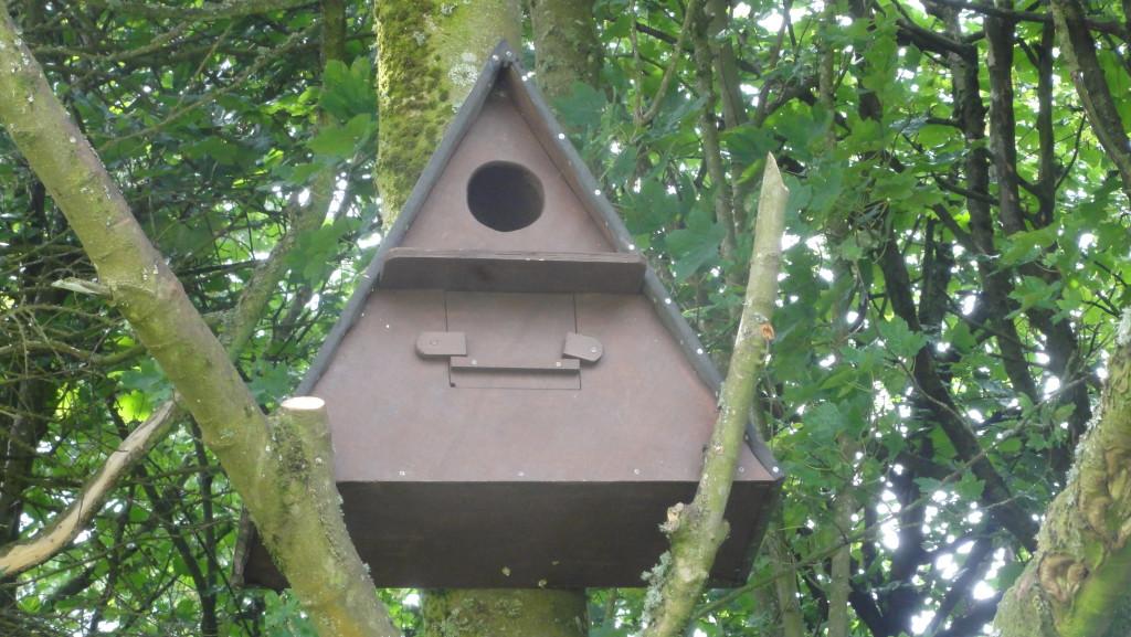 Barn Owl Box (C) Adam Jones