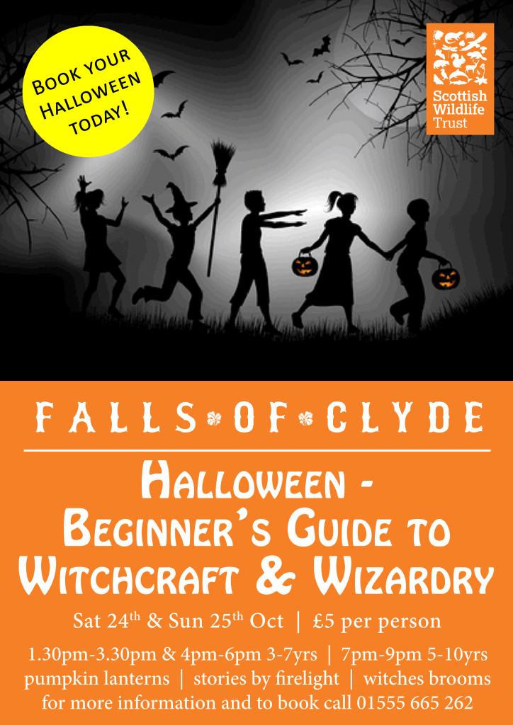 12-Halloween---Beginners-Guide-to-Witchcraft-and-Wizardry-A4