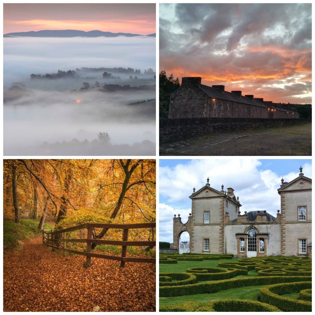 Clockwise from top left - Lanark from Black Hill Cairn (c) Dylan Nardini, New Lanark (c) Ricky Mitchell, Horticulture (c) Alan Collison, Corra Castle, Falls of Clyde (c) Dylan Nardini