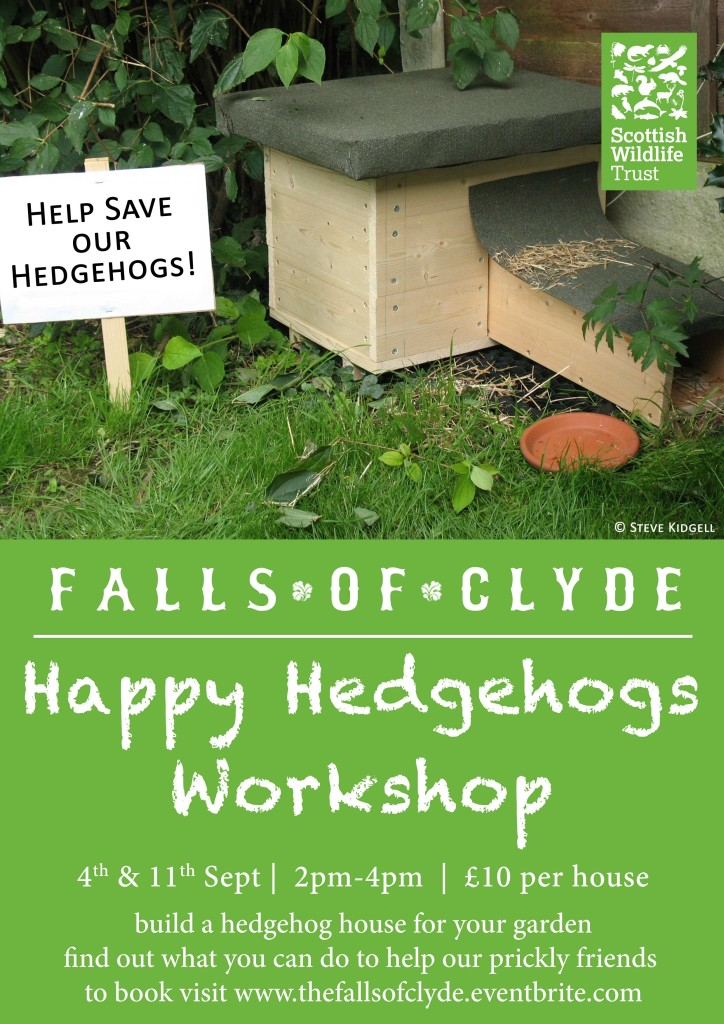 Happy-Hedgehogs-Workshop-A4