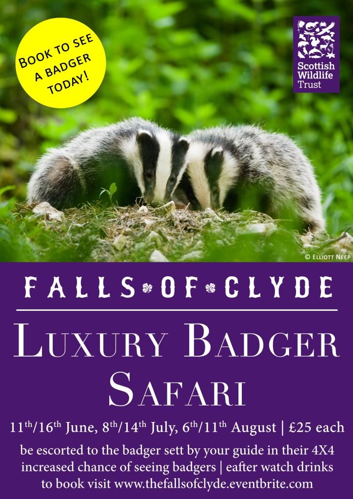 Luxury-Badger-Safari-A4