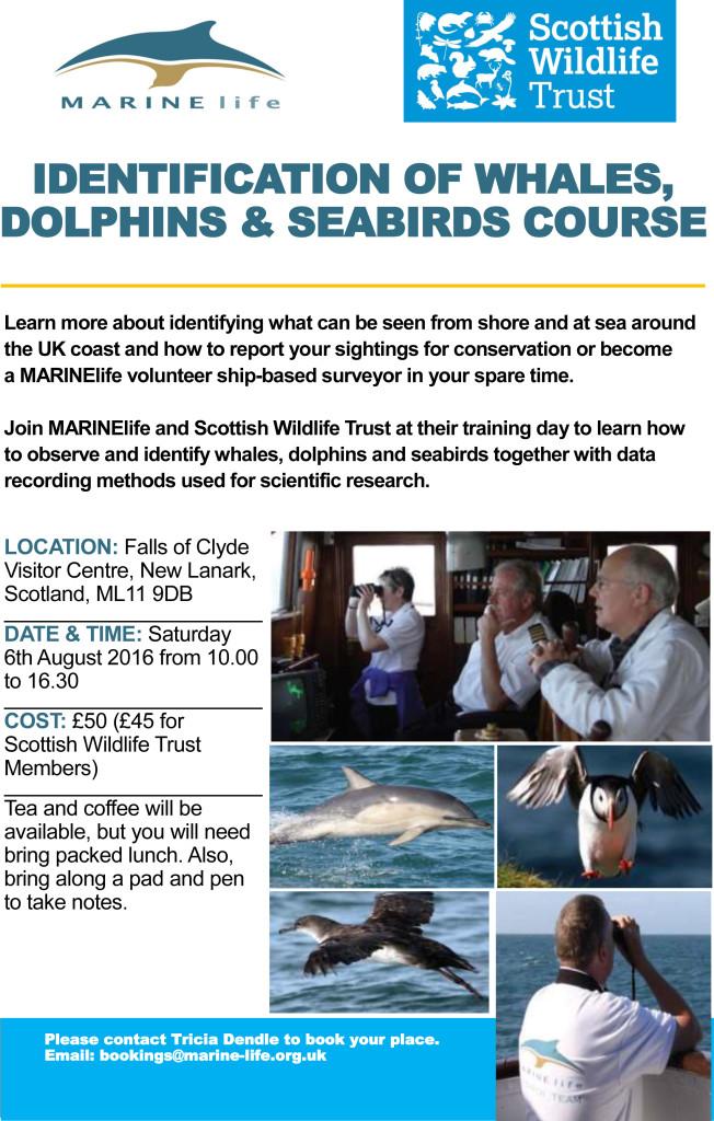 Advert - Scottish WLT - 6th August 2016