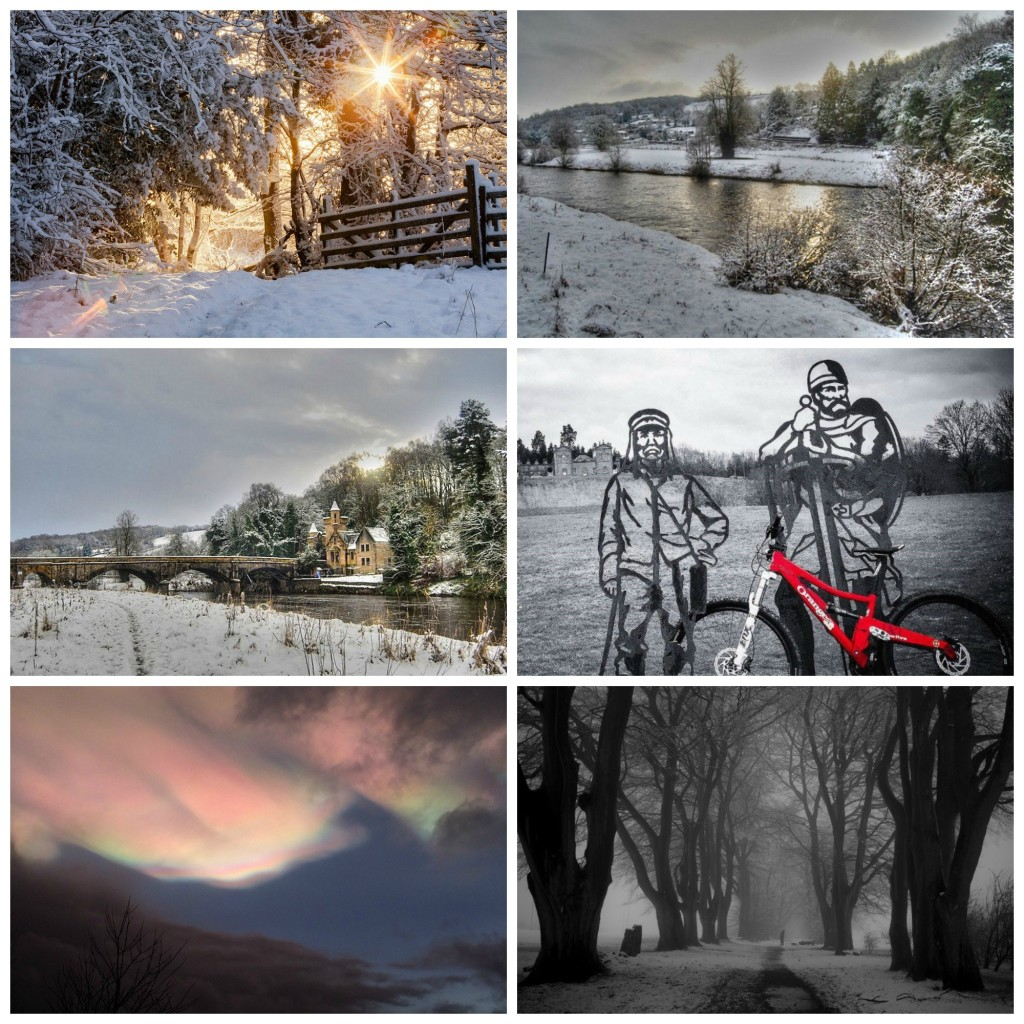 CAVLP Winter Winners, clockwise from top left; (c) Stuart Stevenson, (c) Aileen McCaskill, (c) Carrie Metcalf Watson, (c) Denise Baranowski, (c) Lucy West and (c) Aileen McCaskill.