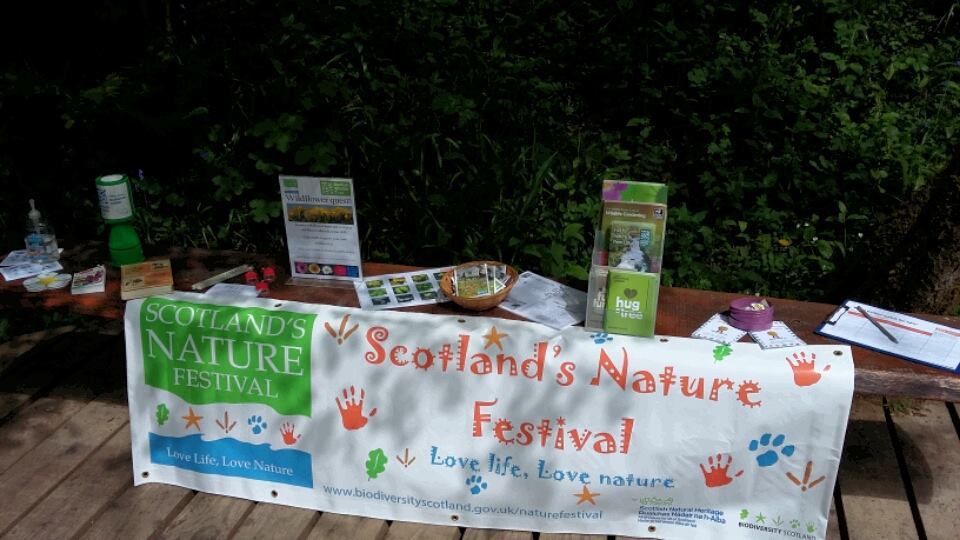 Wildflower quest for Scotland's Nature Festival (c) Lori Moore