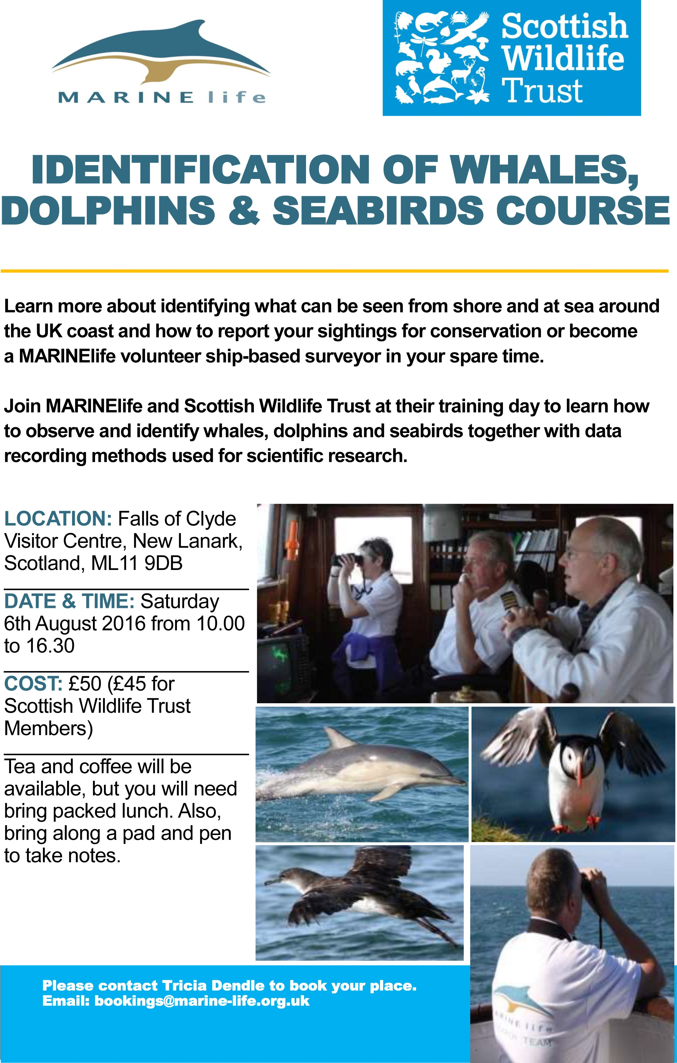 small Advert - Scottish WLT - 6th August 2016