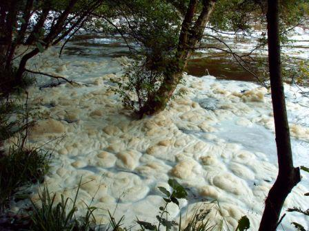 River foam (c) B Cook