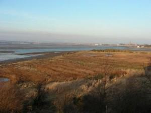Salt Pans - Feb 2008 (c) Scottish Wildlife Trust
